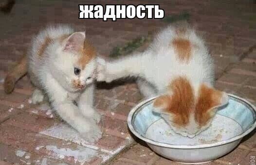 http://s1.anekdoty.ru/uploads/images/funny/open/zhadnost-open.jpg